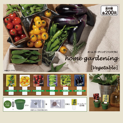 home gardening【Vegetable】画像