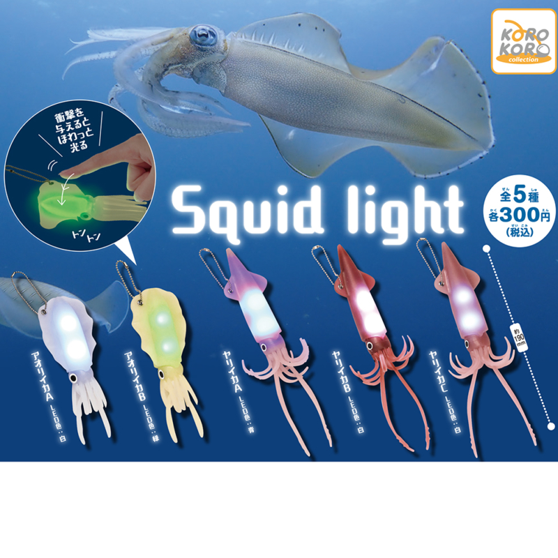 Squid light画像