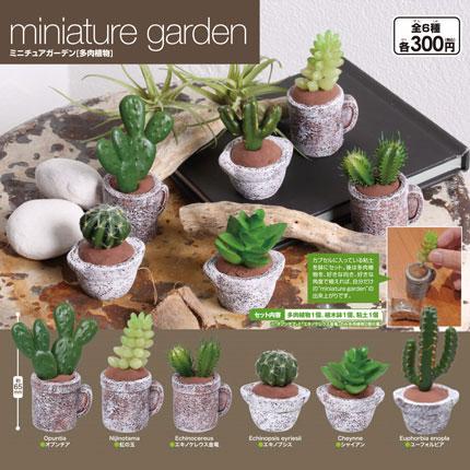 miniature garden[多肉植物]画像