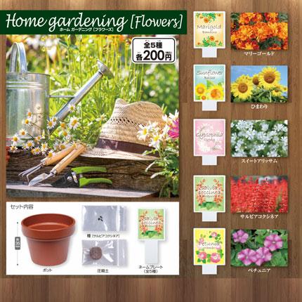 home gardening [Flowers]画像