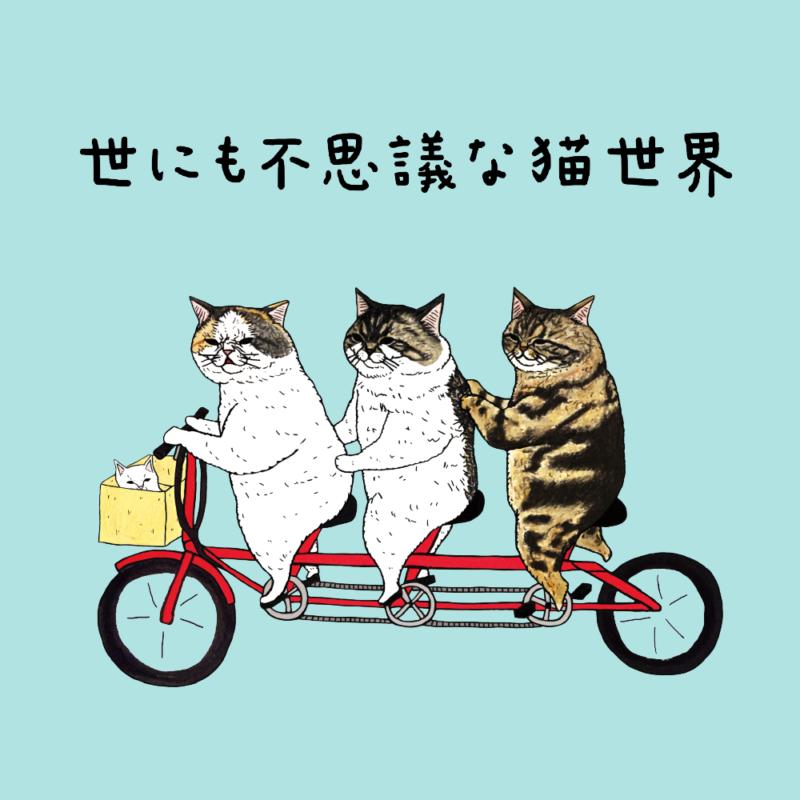 世にも不思議な猫世界 イメージ